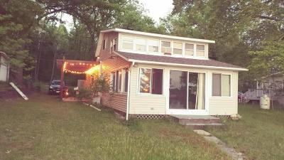Paw Paw Single Family Home For Sale: 41626 N Park Street