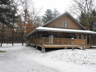 Newaygo Single Family Home For Sale: 23419 2 Mile