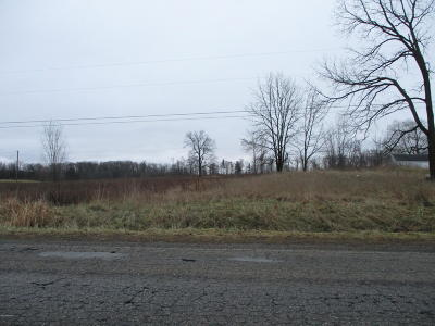 Ionia County Residential Lots & Land For Sale: 4340dw Ota W Clarksville