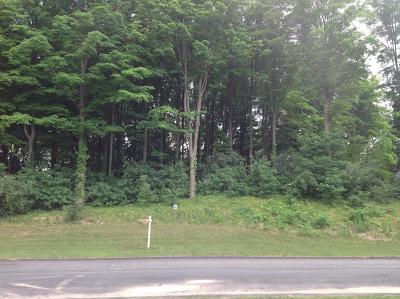 Kalamazoo Residential Lots & Land For Sale: 1046 Hawkins Court