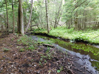 Kalkaska County Residential Lots & Land For Sale: 10322 SW M-33