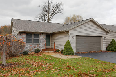 Kalamazoo Condo/Townhouse For Sale: 5812 Wood Valley Road