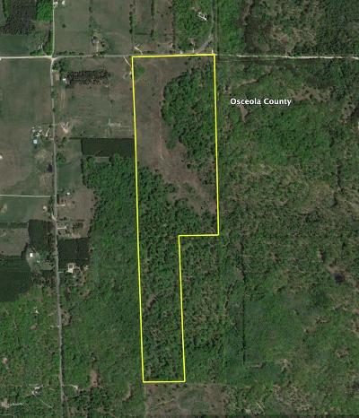 Reed City Residential Lots & Land For Sale: 120 Acres 7 Mile Road