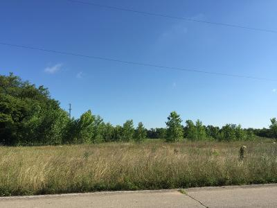 Kalamazoo Residential Lots & Land For Sale: 3658 New Farm Street