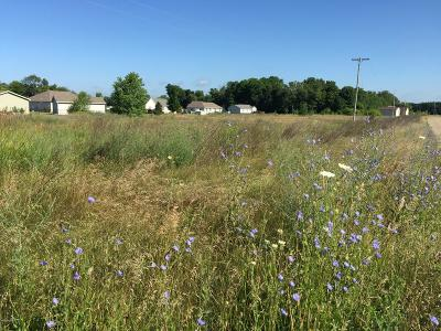 Kalamazoo Residential Lots & Land For Sale: 4000 New Farm Street