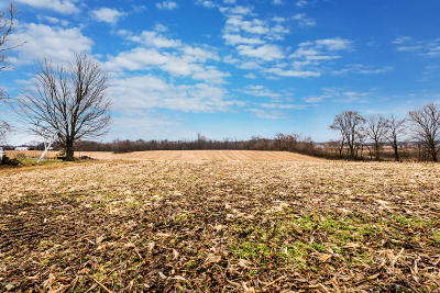 Berrien County Residential Lots & Land For Sale: Painter School Road Road