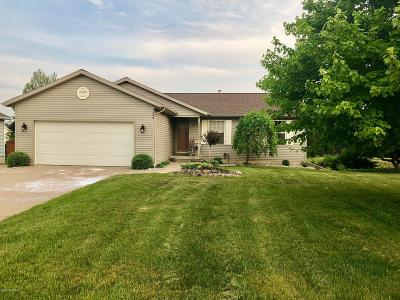 Hudsonville Single Family Home For Sale: 1540 Craig Way