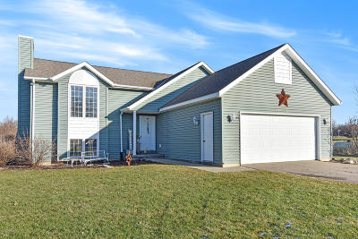 Fennville Single Family Home For Sale: 6353 Orchard Trail