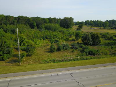 Antrim County, Benzie County, Charlevoix County, Clare County, Emmet County, Grand Traverse County, Kalkaska County, Lake County, Leelanau County, Manistee County, Mason County, Missaukee County, Osceola County, Roscommon County, Wexford County Residential Lots & Land For Sale: W Us 10