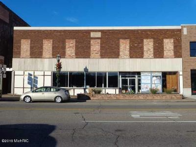 Berrien County Commercial For Sale: 115 E Main