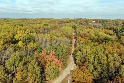 Chippewa Lake, Evart Residential Lots & Land For Sale: 1250 Hudson Bay Road