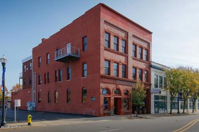 Kalamazoo Condo/Townhouse For Sale: 163 Portage Street #4