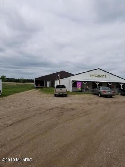 Evart Commercial For Sale: 8036 Us 10