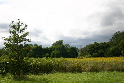Residential Lots & Land For Sale: Helmer Road S