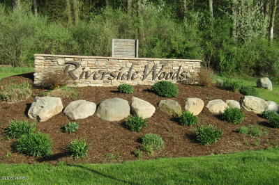 Ionia County Residential Lots & Land For Sale: 11637 Thames Ct Court