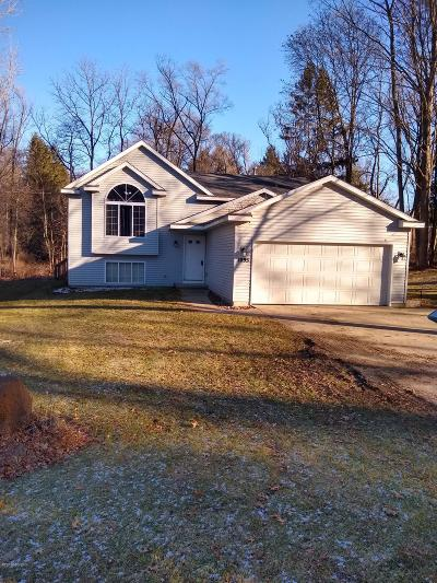 Grand Rapids MI Single Family Home For Sale: $205,500