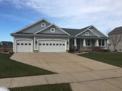 Hudsonville Single Family Home For Sale: 4425 Equestrian Drive