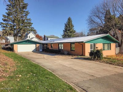 Grand Rapids Single Family Home For Sale: 1247 Rennslaer Street NW