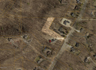 Holland, West Olive Residential Lots & Land For Sale: 6713 Lakeshore Drive