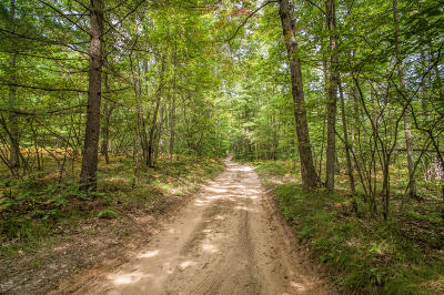 Big Rapids Residential Lots & Land For Sale: 00 Beech Avenue