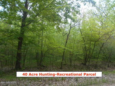 Antrim County, Benzie County, Charlevoix County, Clare County, Emmet County, Grand Traverse County, Kalkaska County, Lake County, Leelanau County, Manistee County, Mason County, Missaukee County, Osceola County, Roscommon County, Wexford County Residential Lots & Land For Sale: E Stolberg Road