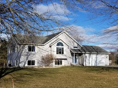 Cedar Springs MI Single Family Home For Sale: $230,000