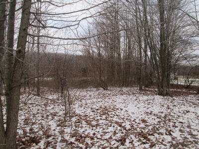 Muskegon Residential Lots & Land For Sale: N Bear Lake Road