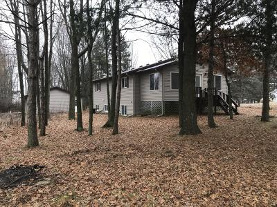 Rockford MI Single Family Home For Sale: $319,900
