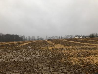 Hudsonville Residential Lots & Land For Sale: 4560 Byron Road