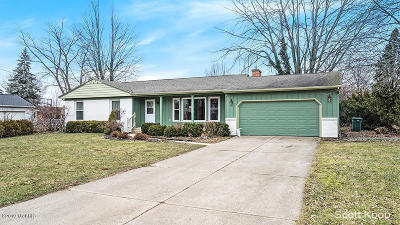 Grand Rapids Single Family Home For Sale: 2368 Woodcliff Avenue SE