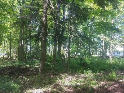 Antrim County, Benzie County, Charlevoix County, Clare County, Emmet County, Grand Traverse County, Kalkaska County, Lake County, Leelanau County, Manistee County, Mason County, Missaukee County, Osceola County, Roscommon County, Wexford County Residential Lots & Land For Sale: Leonard Avenue