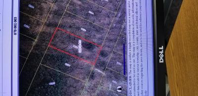Hillsdale County Residential Lots & Land For Sale: 11386 Mackinac Path S