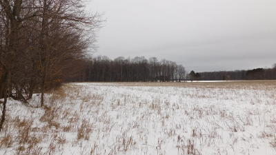 Benzie County, Charlevoix County, Clare County, Emmet County, Grand Traverse County, Kalkaska County, Lake County, Leelanau County, Manistee County, Mason County, Missaukee County, Osceola County, Roscommon County, Wexford County Residential Lots & Land For Sale: 8229 W 6 1/2 Road