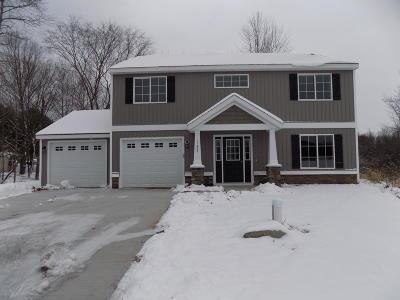 Cedar Springs Single Family Home For Sale: Lot A Albrecht Avenue NE