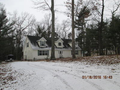 Pentwater Single Family Home Active Contingent: 6543 Mohawk Street