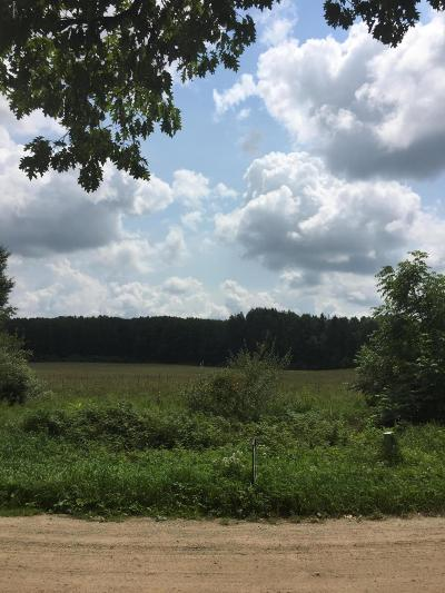 Benzie County, Charlevoix County, Clare County, Emmet County, Grand Traverse County, Kalkaska County, Lake County, Leelanau County, Manistee County, Mason County, Missaukee County, Osceola County, Roscommon County, Wexford County Residential Lots & Land For Sale: 4180 30th
