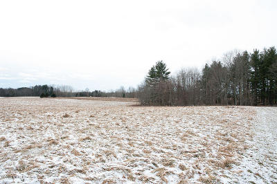 Montcalm County Residential Lots & Land For Sale: 2226 W Dewey Road