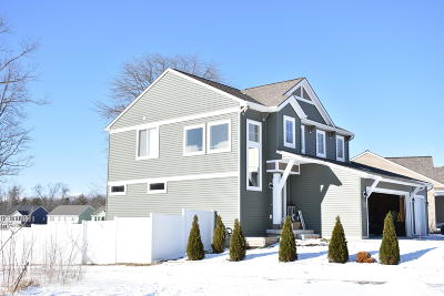 Nunica MI Single Family Home For Sale: $314,000