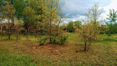 Kalkaska County Residential Lots & Land For Sale: 5841 Main Street
