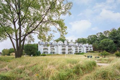 Grand Haven Condo/Townhouse For Sale: 810 S Harbor Drive #21