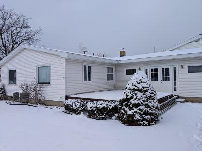 Ludington Single Family Home For Sale: 802 N Staffon Street