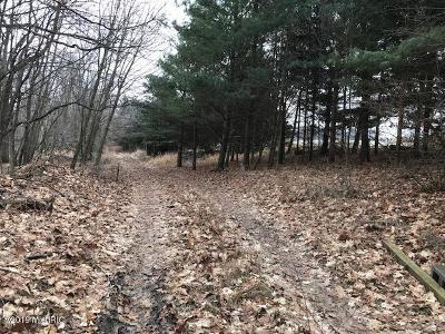 Montcalm County Residential Lots & Land For Sale: 11261 People's Road