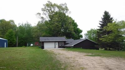 Oceana County Single Family Home For Sale: 5494 N 180th Avenue