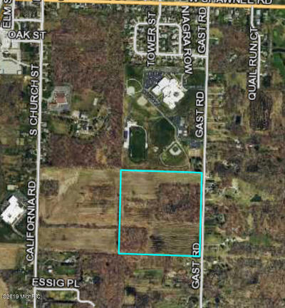 Bridgman Residential Lots & Land For Sale: Gast Road