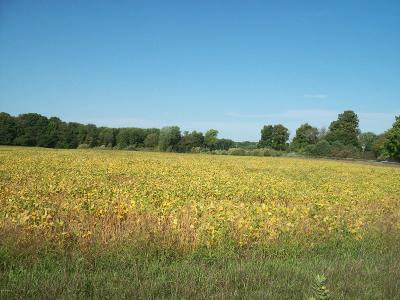 Scottville Residential Lots & Land For Sale: S Gordon Road