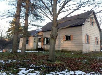 Ludington Single Family Home For Sale: 501 First Street