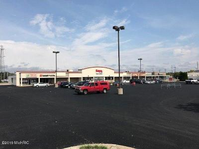 Commercial For Sale: 880 W Sherman Boulevard