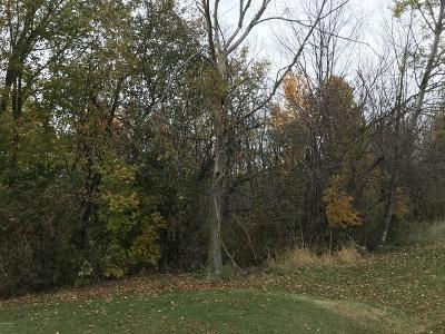 Allendale Residential Lots & Land For Sale: 6364 Warner Street