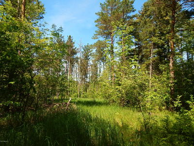 Antrim County, Benzie County, Charlevoix County, Clare County, Emmet County, Grand Traverse County, Kalkaska County, Lake County, Leelanau County, Manistee County, Mason County, Missaukee County, Osceola County, Roscommon County, Wexford County Residential Lots & Land For Sale: 24 Acres W Empire Hwy