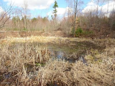 Newaygo County Residential Lots & Land For Sale: 3601 E 20th Street